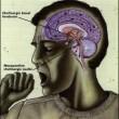 Uticaj neispavanost na gojaznost i mrsavljenje