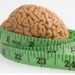 uticaj gojaznosti na mozak