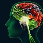 Dijeta i mozak