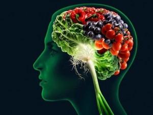 mozak i dijeta