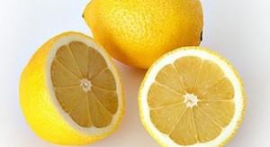 limun dijeta 1