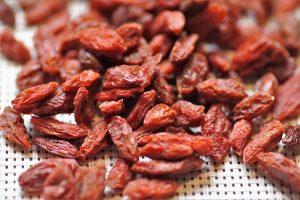 Od 10 najsnažnijih antioksidanasa, godži bobice su prve na listi.